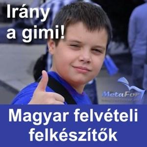 Magyar tanár
